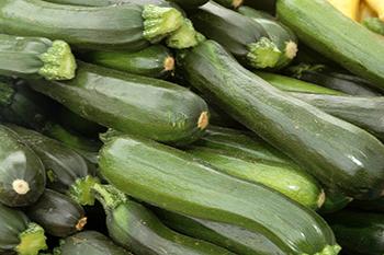 zucchini_be0b2fc33b7af1c4