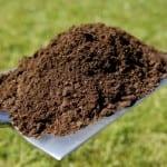 soil on shovel