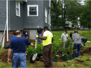 Hartford rain garden