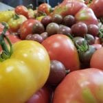 The Low Down on Selecting Tomatoes