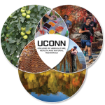 UConn Extension: Committed to a Sustainable Future