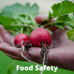 radishes in a person's hand with the words food safety on the photo