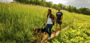 people walking dog on a trail