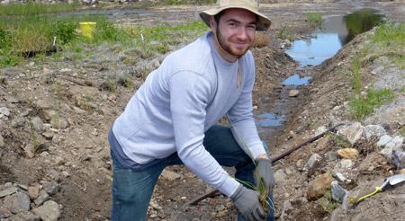 planting shoreline