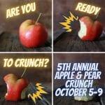 HardCORE CRUNCH: Apple & Pear Activity Worksheets!