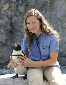 Allison D. Tuttle, DVM, Diplomate ACZM with a penguin