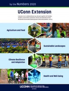 cover of 2020 Extension impact flyer