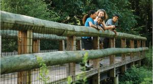 family on bridge smiling