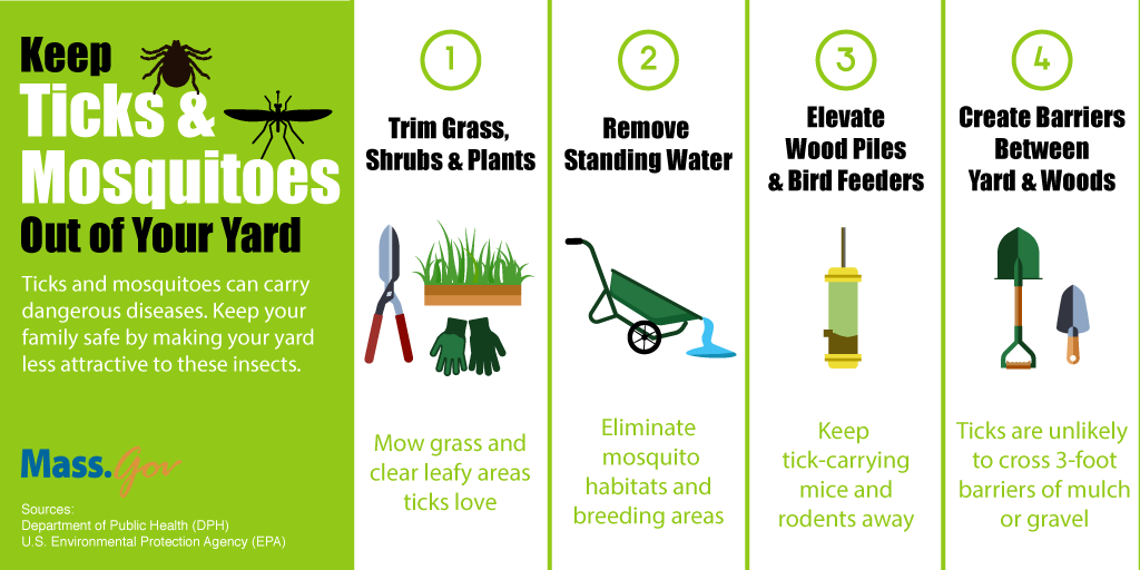 keeping tick and mosquitoes out of yard graphic