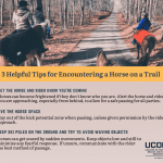 3 Helpful Tips for Encountering a Horse on a Trail