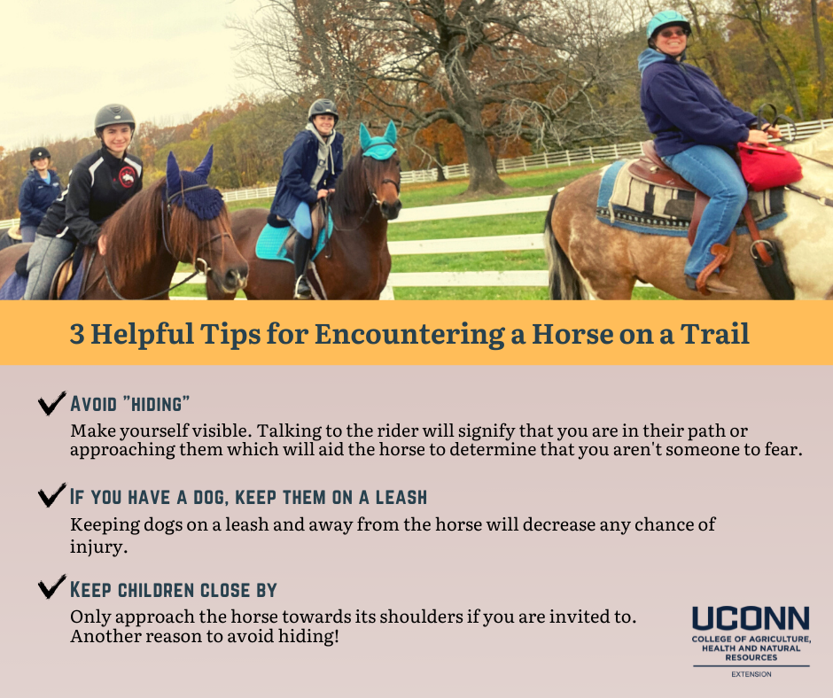 picture of people riding horses with text