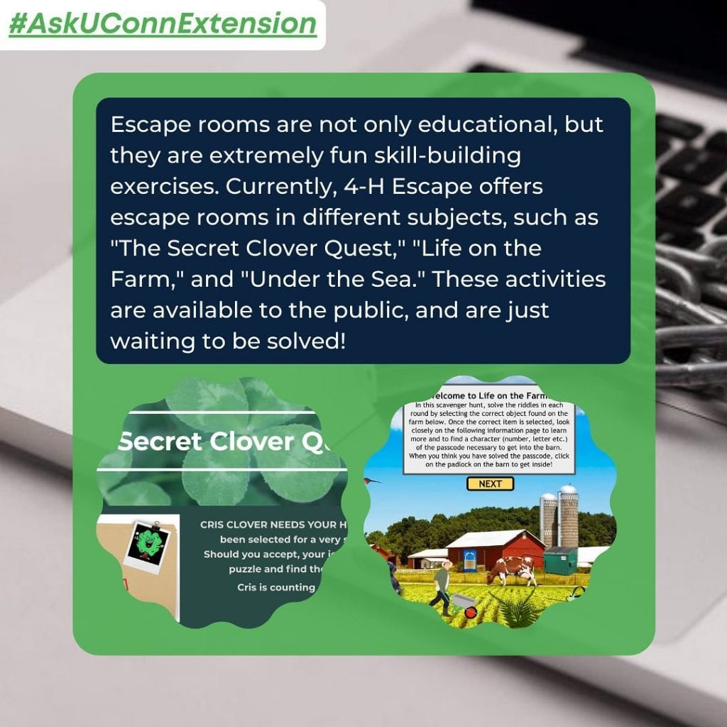 boxes with text, 4-h escape images and laptop background