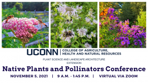 pollinator conference flyer