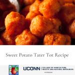 Sweet Potato Tater Tot Recipe